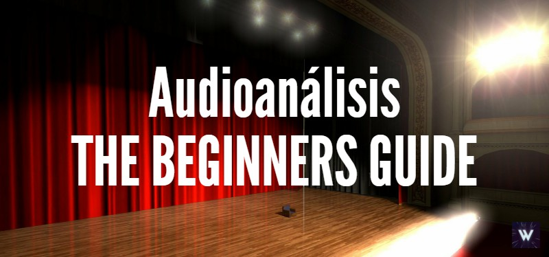 The Beginner's Guide (Audioanálisis)